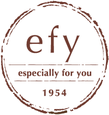 efyロゴ